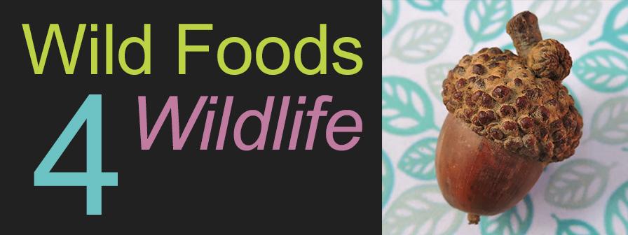 Wildfoods 4 Wildlife